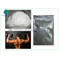 Quality Muscle Mass Steroids Nandrolone Phenylpropionate 99% Purity GMP Grade CAS 62-90-8 for sale