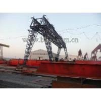 Quality Double Girder Crane for sale