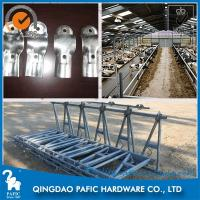 Buy Automatic Releasing Locking Feed Barriers / Dairy Cow Headlock Device at wholesale prices