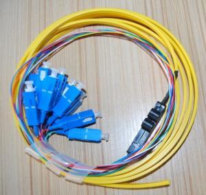 Quality Flat Ribbon 12 Core SC/UPC Fiber Optic Pigtail for sale