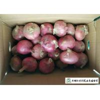 Quality Delicious Fresh Onions Common Cultivation Type Maintain Cardiovascular Health for sale