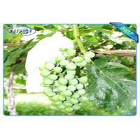 Quality OEM Disposable Nonwoven Fruit Protection Bag For Grape Size 20 cm 22cm for sale