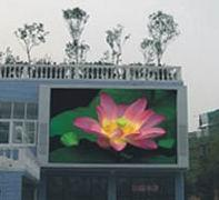 Quality Ratio Outdoor LED Module for sale