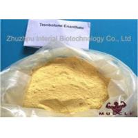 Quality Raw Yellow Crystalline Trenbolone Enanthate Powder , Tren E Steroids For Lean Muscle for sale
