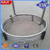 China Titanium coil pipe& tube for heat exchanger or other industrial use with 15 years experiences on sale