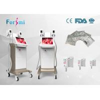 Quality 12 years experienced OEM ODM service original beauty Cryolipolysis Slimming Machine for sell for sale