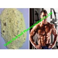 Quality Trenbolone Enanthate Raw Hormone Powders tren 100 Bulking and Cutting Phases for sale