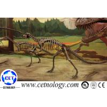 Hot Sale Dinosaur Skeleton Usage in Dinosaur Theme Park for sale