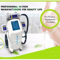 Quality Cool Shaping Cryolipolysis Fat Freezing Machine Multi Language Floor Standing for sale