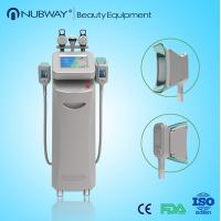 Quality portable cryolipolysis freeze fat,effectively cryolipolysis slimming machine for sale