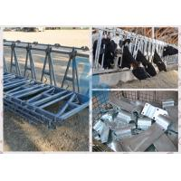 Buy Durable Locking Feed Barriers , 10FT Length Cows' Feed Head Lock Fence for Pasture at wholesale prices