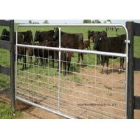 Quality Fully Welded Hot Dipped Gal. Farm Steel Gates , Liivestock Fence Panels for sale