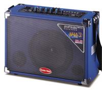 Pro Audio Lightweight Portable PA Speaker With USB / SD / FM And Bluetooth Function