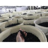 Buy cheap Polyester Flock Tow Dope Dyed Black 1.5D Bright Flock Fiber 1.5D*0.6mm For from wholesalers