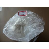 Buy cheap Raw Steroid Powders Testosterone Blend / Testosterone Sustanon from wholesalers
