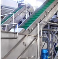 Carbon Steel Clapboard Elevator Fruit And Vegetable Processing Equipment 6Ton /