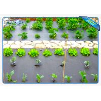 Quality Eco-friendly 30gsm Black Color Non woven weed control fabric For Vegetables for sale