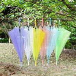 Quality EVA Long Handle Rain Sun Clear Plastic Dome Umbrella Rainproof Wedding Photo for sale