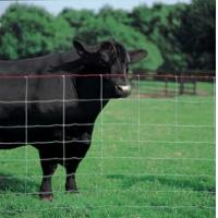 Quality Ranch Fence for sale