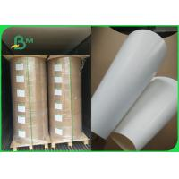 Quality White Coated Rigid SBS Paper Board GC1 Board 250gram for Packaging for sale