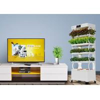 Quality Smart Indoor Hydroponic System For Planter Fashion Versatile Energy Saving for sale