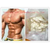 Quality White Powder High Purity Human Steroid Hormones For Sex Enhance CAS 224785-91-5 for sale