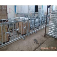 China Stainless Steel Calf Creep Feeder Panels , Durable Cattle Headlock Panels on sale