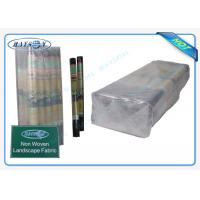 Quality 100% PP Raw Non Woven Weed Barrier Landscape Fabric Protect Plant / Garden / Fruit / Weed Control for sale