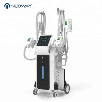 Buy cheap OEM & ODM salon use permanent cellulite cold body sculpting cryolipolysis fat from wholesalers