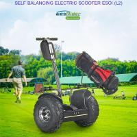 Quality Outdoor Electric Golf Scooter Self Balance 19 Inch Fat Tire Two Wheels Chariot for sale