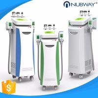 China Newest fat freeze! Cryolipolysis machine body slimming cellulite reduction skin tightening facial rejuvenation on sale