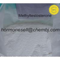Quality Bodybuilding Testosterone Steroids powder Methyltestosterone 17- Alpha - Methyl - Testosterone for sale