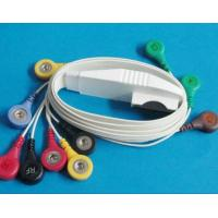 Buy cheap 10-leads ECG Cable for Mortara Holter, One Piece IEC/AHA/Snap EKG Patient Cable from wholesalers