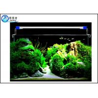 Buy White Blue Light Crystal Fish Tank Light , 8 W Led Aquarium Light at wholesale prices