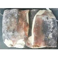Quality Bqf Squid Dried Fish Frozen Huge Size Store Condition -18 Degree C for sale