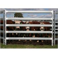 Buy cheap 30*60*1.6mm Oval Pipe economic Full Welded Used Horse Corral Panels For Farm from wholesalers