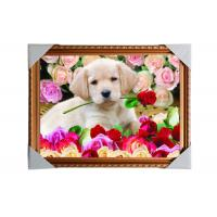 Quality Customised PET Pictures 3D Lenticular Printing Service Stock 3D Image PS Frame for sale