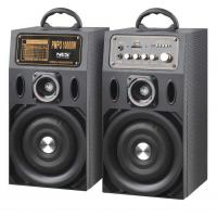 Quality Lightweight Portable Active PA Speaker With Tweeter Light / Portable Stereo System for sale