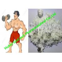 Quality Bodybuilding Androgenic Anabolic Steroids Powders Nandrolone Cypionate 601-63-8 for sale