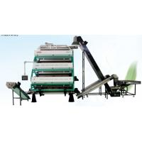 Quality Vertical Tea Colour Sorter Machine , Advanced Optical Sorting Equipment for sale