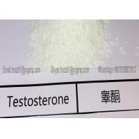 Quality 99% purity white Raw Testosterone Powder Testosterone Base muscle building 100g for sale
