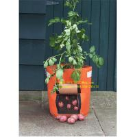 Quality PROMOTION GROW BAG,SISE IS FROM 2-15 GALLON COLORS ARE OPTIONED,SAMPLE IS FREE WE HAVE PROMOTION TIMELY for sale
