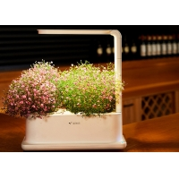 Buy cheap 3pcs Plant PP Home Hydroponic Growing Systems With Led Light from wholesalers