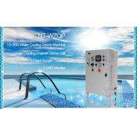 Quality Fish farming Ozone Generator remove odor for water purification 40g large zone for sale