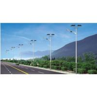Quality Custom Color Solar Powered Lights SS Material Big Size 5 - 10 M Height for sale