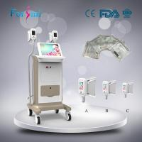 China Max -15 celsius Cold lipolysis machine freeze belly fat away slimming beauty machine on sale