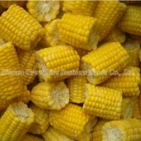 Quality Individual Quick Frozen Corn Cuts Frozen Corn Frozen Food for sale