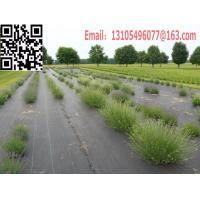 weed barrier ground cover weed mat landscape mat silt fence fabric (45).jpg
