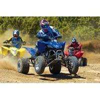 China 200CC EEC Three Wheel Motorcycle/ATV on sale