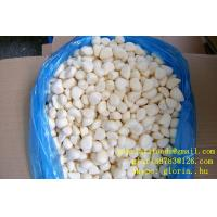 Quality 2014 new crop frozen garlic cloves for sale